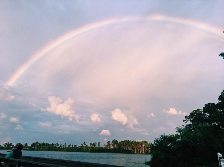 florida rainbow