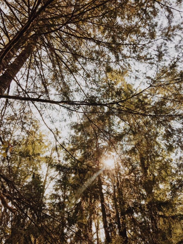 washington campground