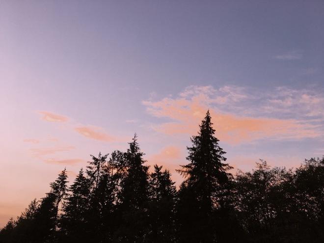 washington skies