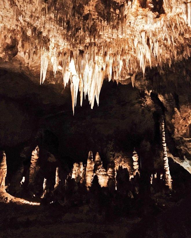 carlbad caverns