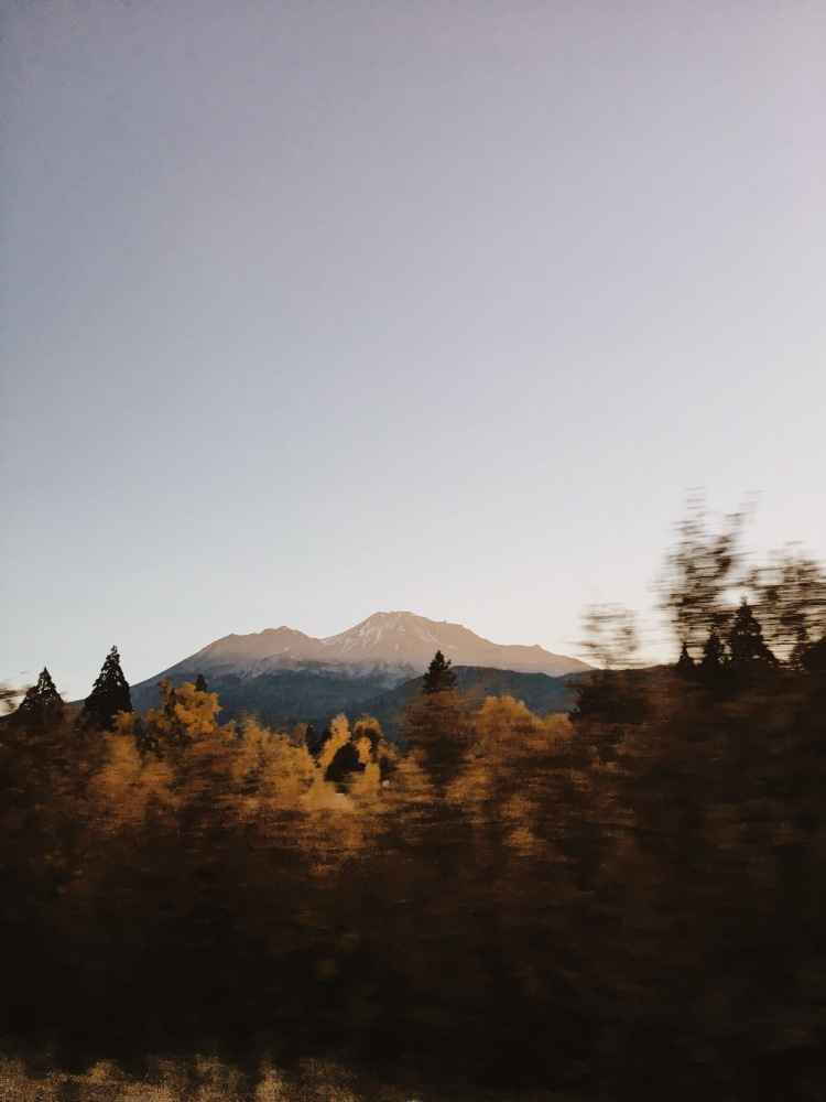 mount shasta sunrise